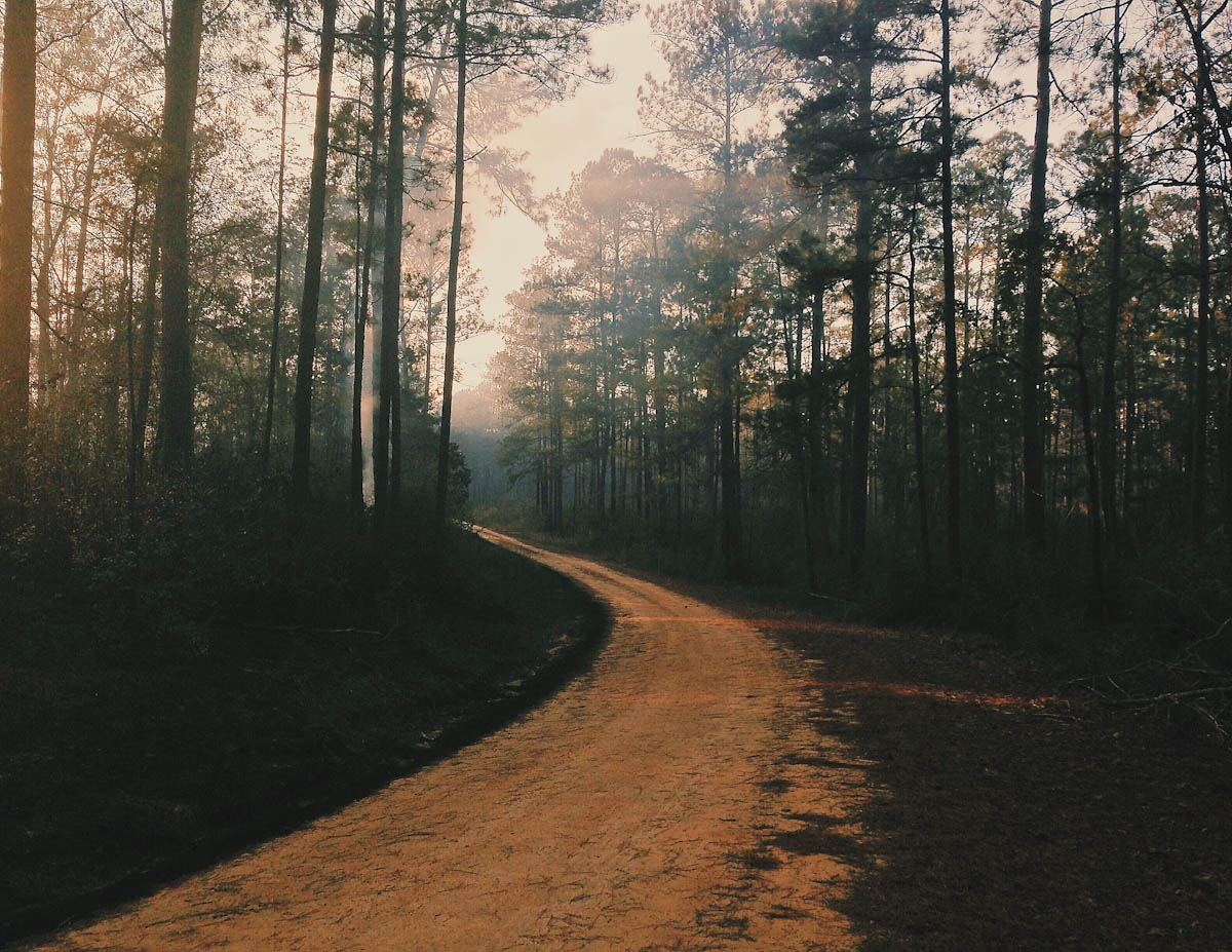 Smoky Dirt Road, Forrest County, MS