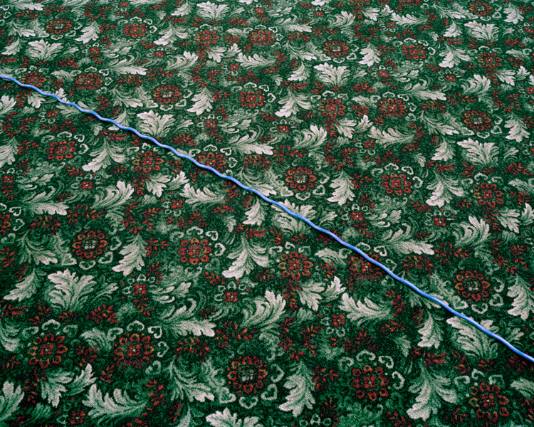 Cord Crossing the Floral Carpet