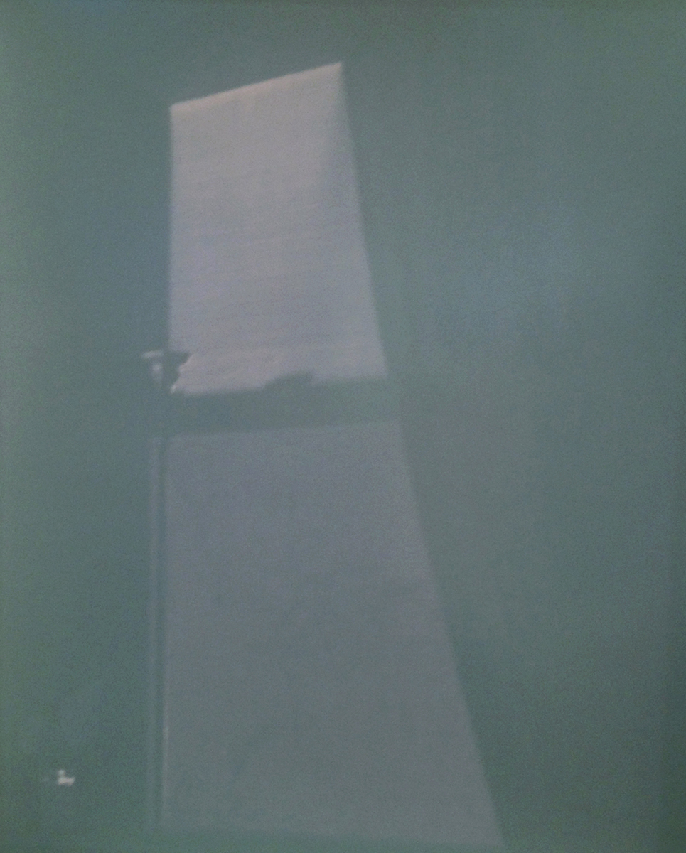 Shadow of a window, a vase of flowers in the distance, 2011 8 x 10 Disappearing Photograph on Gelatin Silver Paper, First exposure
