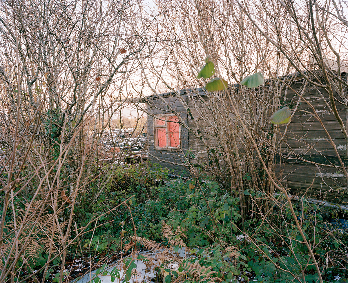 Paul's cabin, January 2011