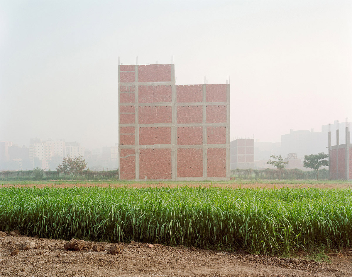 New Construction on Farmland; Maryouteya, Cairo. 2012.