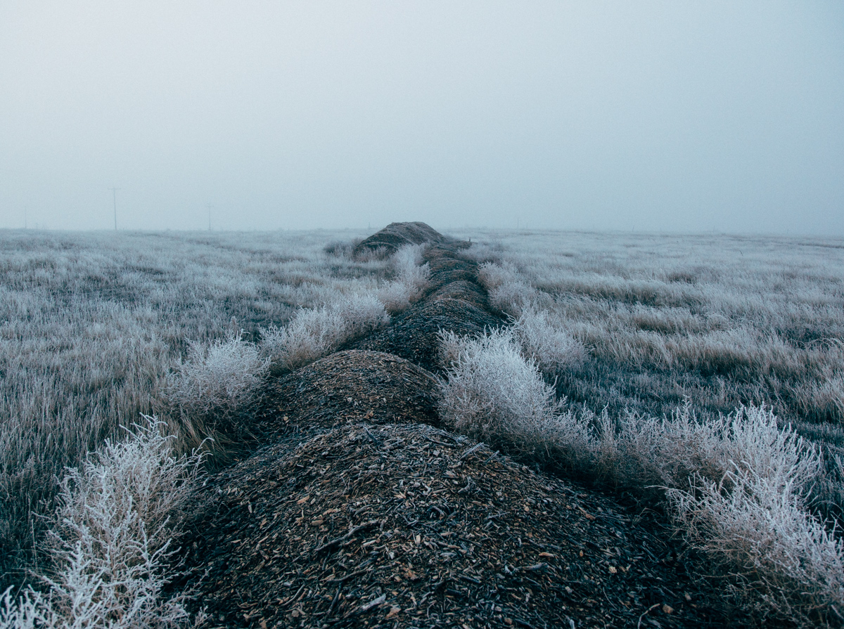 Mulch Pile Covered in Frost in a Freezing Fog on the Plains
