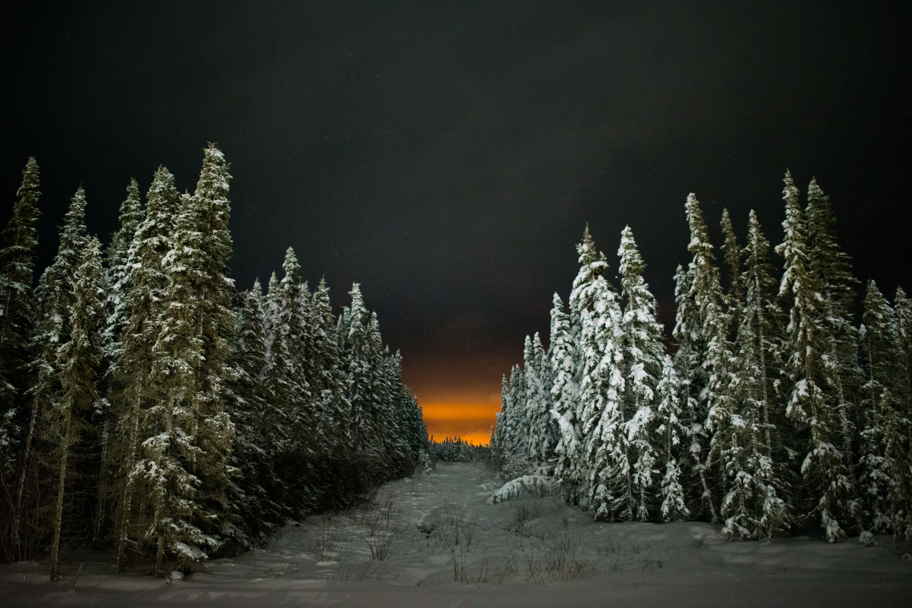 Lights from a Shell oil sands development seen through Boreal Forest, near Fort McKay.
