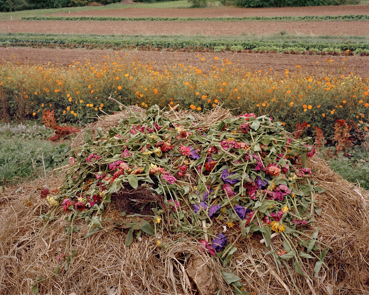 Compost, Paonia, Colorado, 2015
